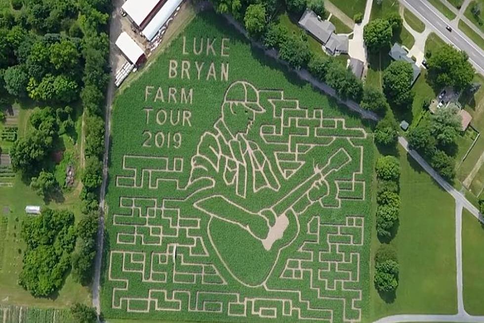 Luke Bryan, Luke, Bryan, Corn Maze